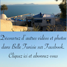 Belle Tunisie sur Facebook  position 3 (226x226)