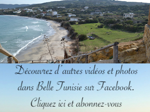 Belle Tunisie sur Facebook position 4 (301x226)